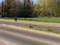 tulpenbluete-2020-04-10-14